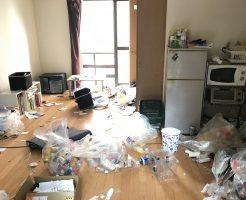 数年放置していたお部屋のゴミや不用品をまるごと回収☆お部屋が片付いたとお喜びいただけました。