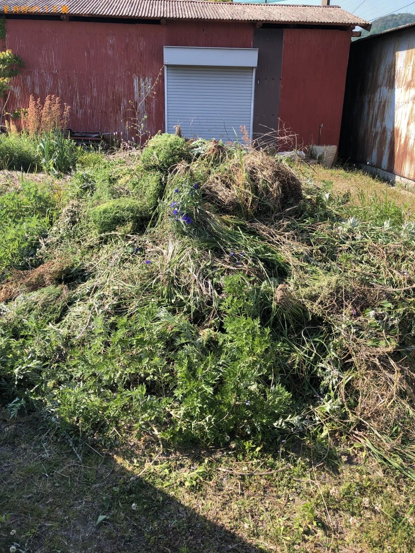 【大島郡周防大島町】刈り取り収集済みり草の回収・処分ご依頼