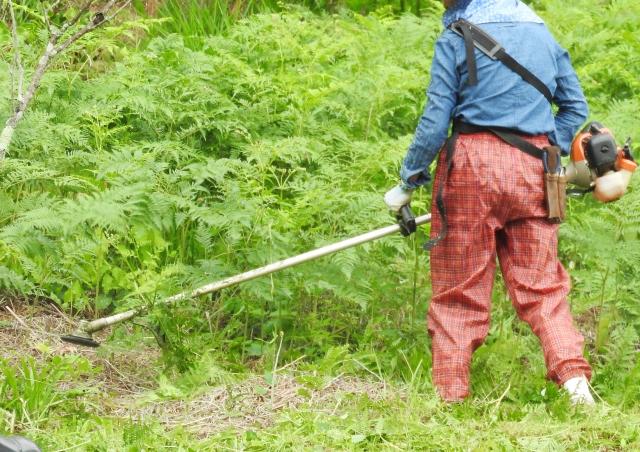 山口市で草刈りにかかる料金相場は?追加料金や業者選びのコツまで解説